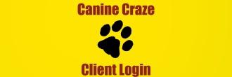 Client.Login.2